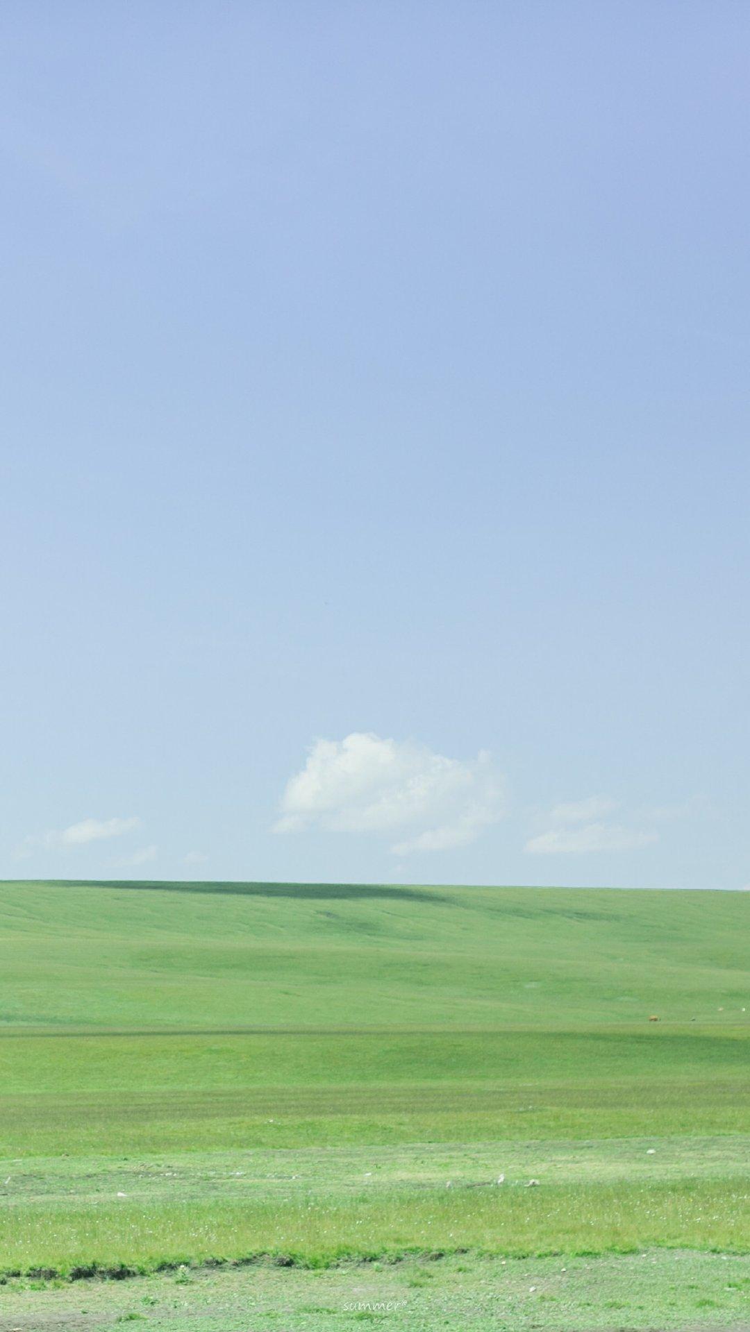 清新草原绿色护眼风景手机桌面壁纸