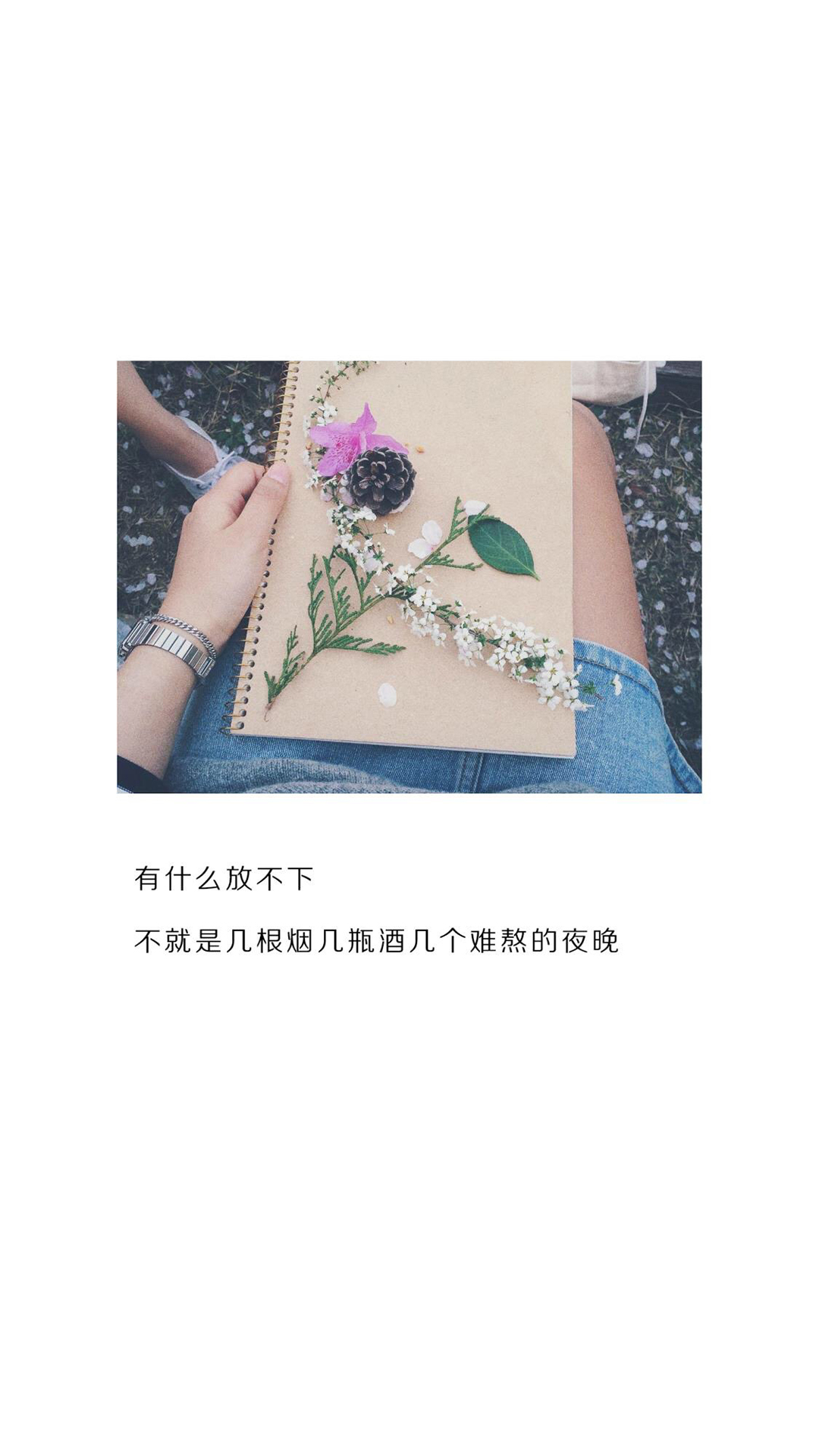 经典情话语录高清花卉手机壁纸图片