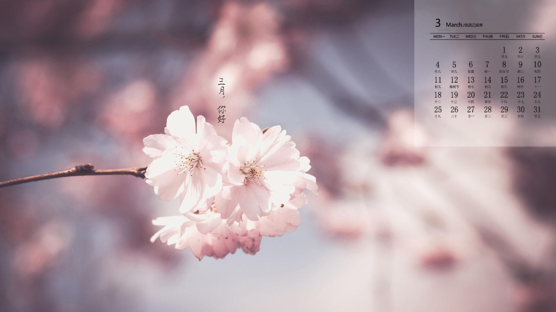 唯美春季绿植风光图片日历壁纸