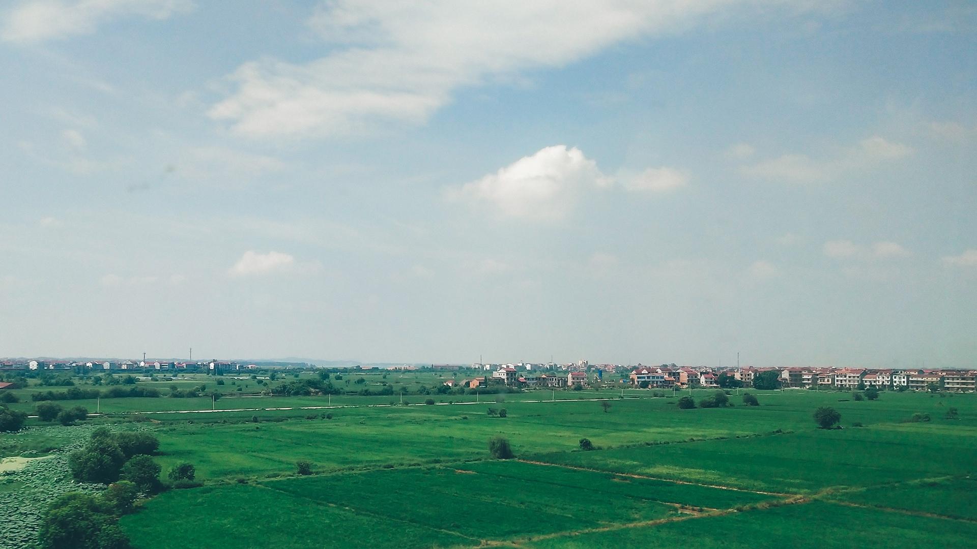 阴天下的绿色草原风光图片