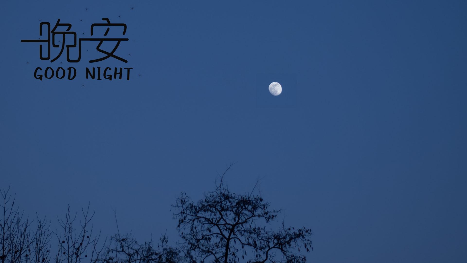晚安夜晚迷人月色图片